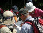 【イベント報告】熊城山の植物観察会