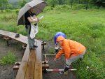 【イベント報告】霧ヶ谷の植生調査 夏