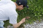 【イベント報告】霧ヶ谷湿原の植生調査(夏)