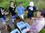【イベント案内】滝山川の水生生物観察会