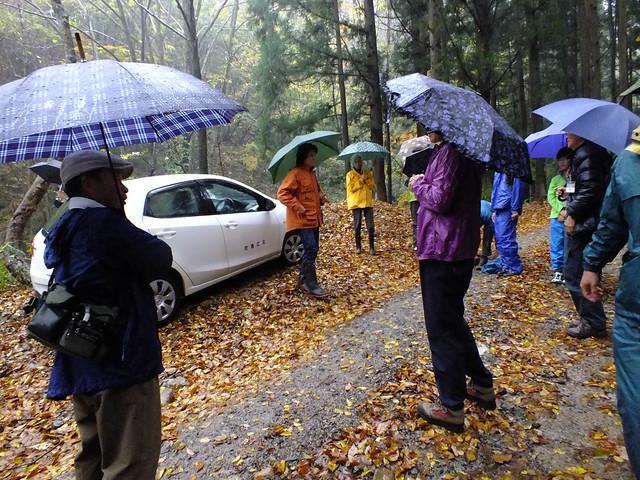 傘や合羽を装備して観察開始.