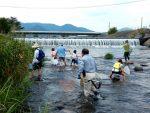 【イベント案内】可愛川の水生生物観察会