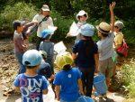 【中止】夏休み親子観察会 -水辺の生き物を観察しよう!-