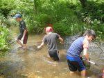 【イベント報告】夏休み親子観察会 −水辺の生きものを観察しよう!−