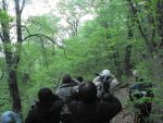【イベント報告】ブナ林のバードウォッチング