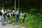 【イベント報告】畳山の植物観察会