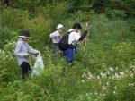 【イベント報告】霧ヶ谷湿原実験地の植生調査