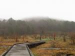 雨の日。(2020.4.20)