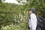 【イベント案内】せどやまの植物観察会(秋)