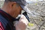 【イベント案内】春の渓畔林植物観察会