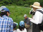 【イベント案内】八幡湿原(本坪谷)のいきもの観察会
