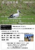 【イベント案内】渡り鳥写真展