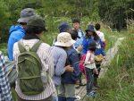 【イベント案内】霧ヶ谷湿原のいきもの観察会