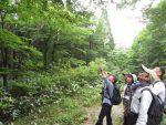 【イベント案内】天狗石山の植物観察会