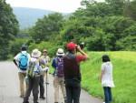 【イベント案内】八幡高原の野鳥観察会
