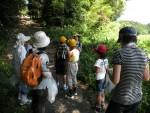 標本づくり教室@北広島町図書館のレポート