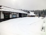 初雪と雪かき