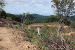 【イベント案内】八幡高原の景観と環境を学ぶ会@鷹ノ巣山