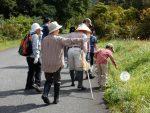 霧ヶ谷湿原 秋の生き物観察会(再掲載)