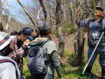 【イベント案内】川辺の植物観察会