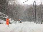 今日も雪(2017.12.11)